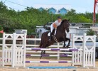 FEI World Jumping Challenge, Category C Event #2 - September 2015