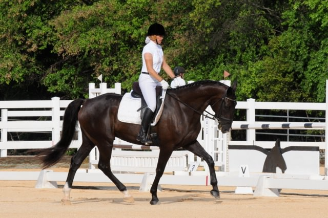 2014-06-01_CEA_Dressage_Tracey
